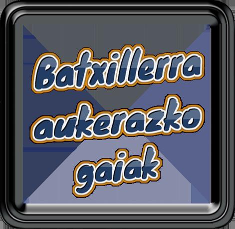 BATXILLERRA AUKERAZKO GAIAK